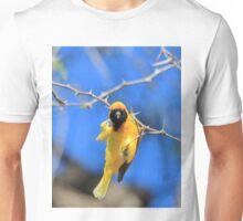 Golden Weaver - Hanging on for LIfe Unisex T-Shirt