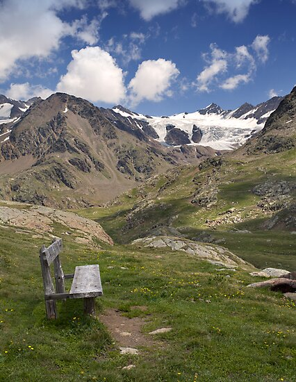Bench with a View by Krys Bailey