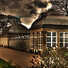 Greenhouse by Andy Harris
