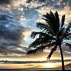 Sunset in Paradise by Teresa Zieba