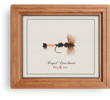Royal Coachman Canvas Print