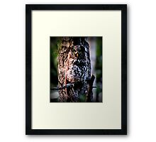 """WHO?"" Framed Print"