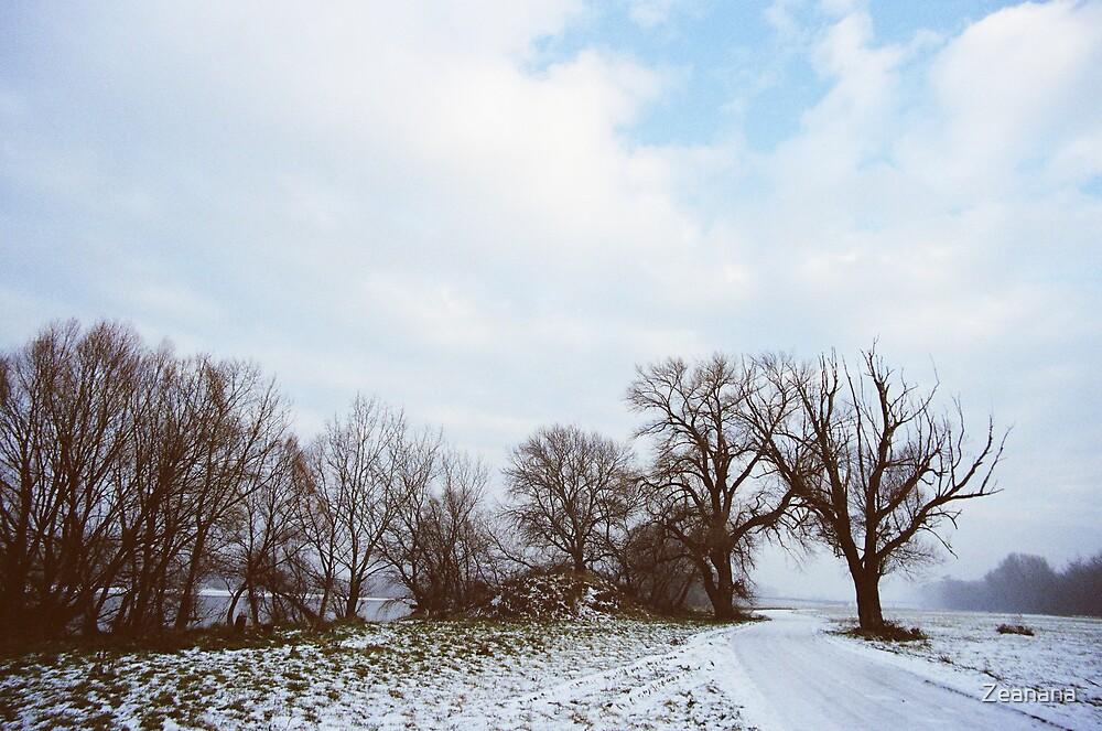 A Walk in Winter by Zeanana