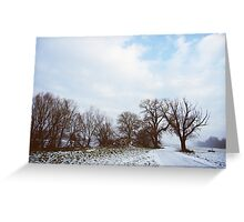 A Walk in Winter Greeting Card