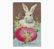 Vintage Easter Bunny Kids Clothes