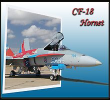 "CF-18 ""Out of Bounds"" by ScottH711"