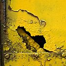 Yellow and Black by Paola Jofre