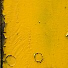 yellow and black 2 by Paola Jofre