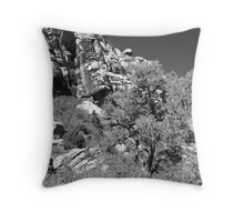 View from Ice Box Throw Pillow