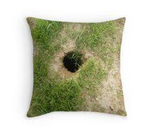 Groundhog Hole Throw Pillow
