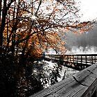 Boardwalk west side of lake  by KSKphotography