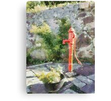 Red water pump, County Carlow, Ireland Canvas Print