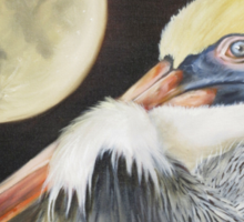 Moon Over Mississippi A Pelicans Perspective Sticker