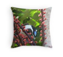 Blue Eyed Honey eater & Red Umbrella Fruit-2 Throw Pillow