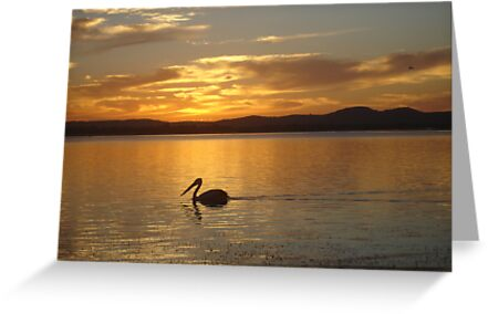 Orange Pelican Sunset by Martice