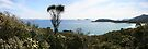Squeaky Bay Panorama by Richard Heath