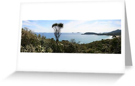 Squeaky Bay Panorama by Richard Heath