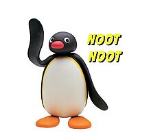 Pingu Photographic Print