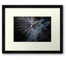 The Handiwork of a Spider  Framed Print
