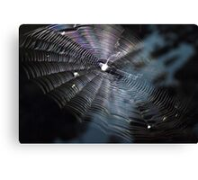 The Handiwork of a Spider  Canvas Print