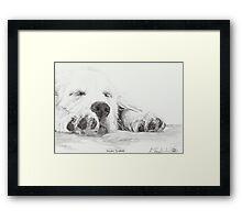 Golden Slumbers Framed Print