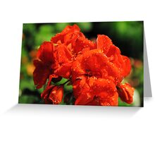 I Am Red! Greeting Card