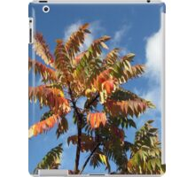 Glorious Surmac in Autumn iPad Case/Skin