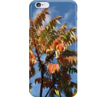 Glorious Surmac in Autumn iPhone Case/Skin
