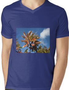 Glorious Surmac in Autumn Mens V-Neck T-Shirt