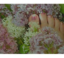 Sweet Scented Lilac Toes Photographic Print