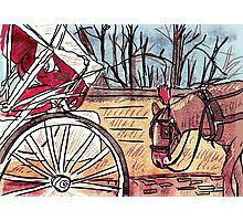 Horse and Carriage (NYC) Photographic Print