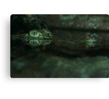 Saltwater Crocodile. Canvas Print