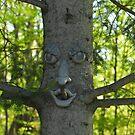 Clark's Tree Face by TerriRiver