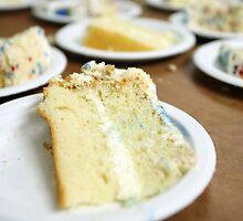 Cake Slices by BravuraMedia
