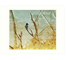 Belted Kingfisher At Rivers Edge Art Print