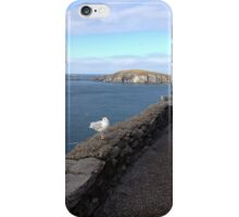 Ireland - Dingle Peninsula iPhone Case/Skin