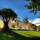 Palm House, Adelaide Botanic Gardens by Graham Jones