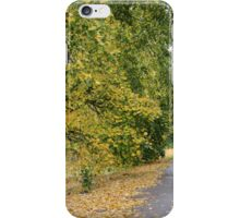Ireland - Blarney Walk iPhone Case/Skin