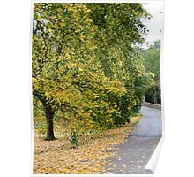 Ireland - Blarney Walk Poster