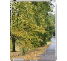 Ireland - Blarney Walk iPad Case/Skin