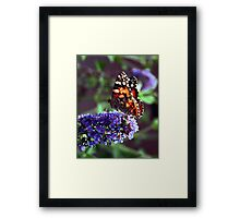 Color Attracting Color Framed Print