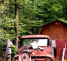 Old Truck by jwawrzyniak