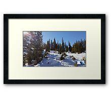 Snowy Scene 1 Framed Print