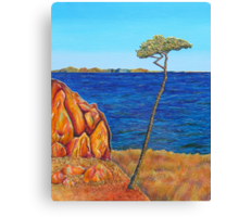 View from Portarlington Canvas Print