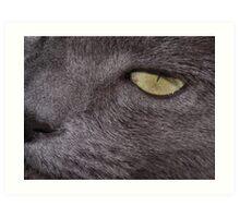 """""""My Eye"""" Art Print"""