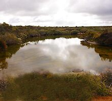 Bilabong in Fitzgerald River National Park. 1835 views by georgieboy98