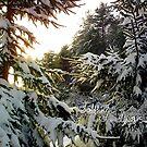 blizzard 1 by LoreLeft27