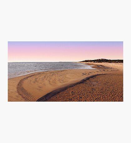 Shark Bay Beach At Dawn  Photographic Print