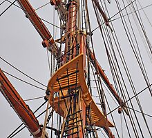 RRS Discovery (11) by kalaryder
