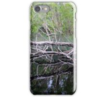 The River of Mirrors iPhone Case/Skin